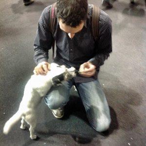 Me feeding Germanys famous dog Polly - Step 1