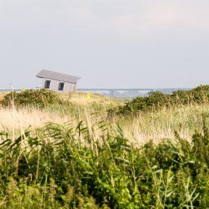 Dunes with Femahrnsund Brige in the Background